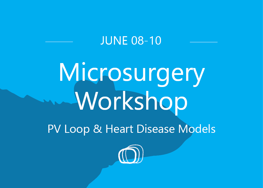 PV-workshop-June2020