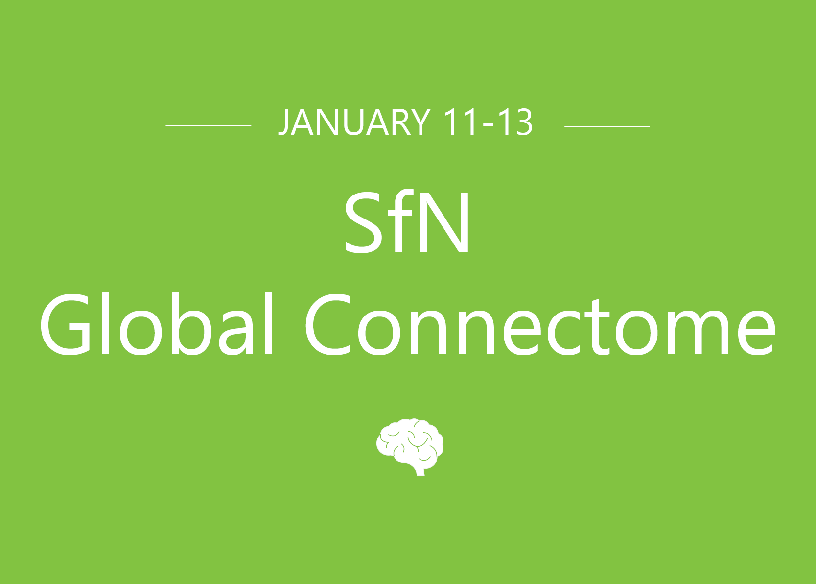 Sfn connectome 2021